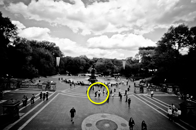 Central Park Proposal 1