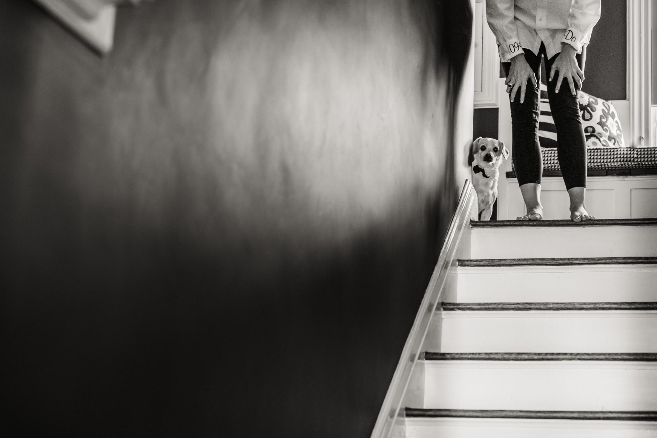 photo journalistic wedding photographer in new york